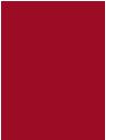 Pablo Siebel Logo